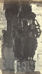 Pillar in Trimul Naik's Portico [Pudu Mandapa]. The  marriage ceremony.